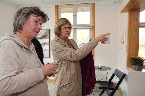 - Jeg har lyst på begge de to bildene, men jeg må nesten velge ett av dem. Det er kjempevanskelig, sier en av de kunstinteresserte liungene som besøkte Eva Solheims (t.v.) utstilling og atelier på Galleri Perrongen i Lierbyen lørdag.
