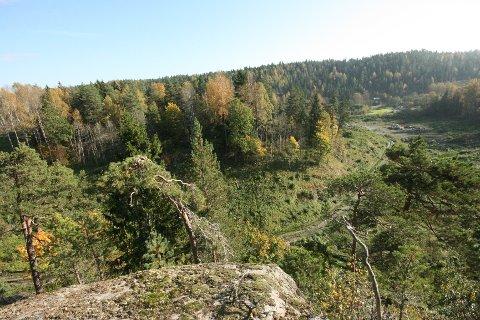 Utsikt mot Tjuvåsen og røverhula.