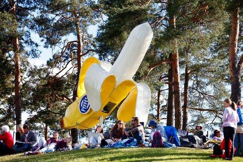 FORFREMMET TIL KUNST: Etter 40 år havnet Banan-Matthiessens 6 meter høye reklamebanan som kunstverk på Høvikodden. Foto: Anette Andresen