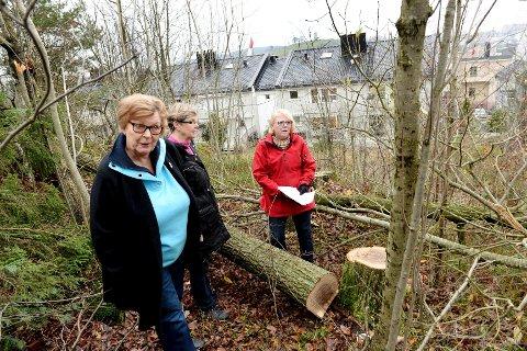 Fra venstre: May-Britt Høili, Bente Aumo og Ruth Cecilie Klaveness i sameiets hage er provoserte over at naboen har tatt seg til rette på eiendommen deres.