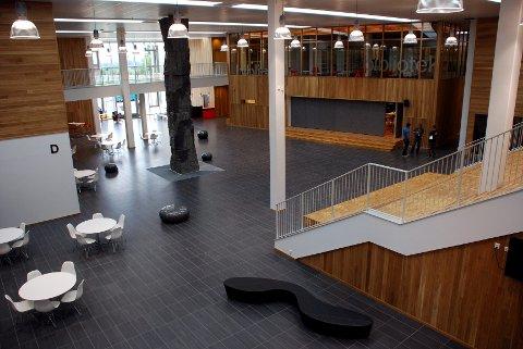 Vestibylen til Høvik skole er et imponerende skue. Til høyre skimtes amfiet, mens øverst ser vi biblioteket. Under biblioteket ligger et studio/musikkrom, og midt ute på Torget står den høyreiste steinskulpturen «Atlas».
