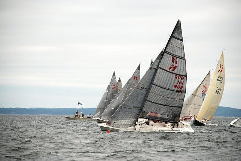 Med fire førsteplasser og tre andreplasser som tellende resultater var «Eldrebølgen» suveren. FOTO: SABINE AMELN