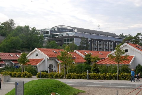 Det er planer om nye utstillingshaller, idrettshaller, fotball- og håndballbaner med kunstgress, ridehall og svømmehall. Arkivfoto. Marianne Henriksen