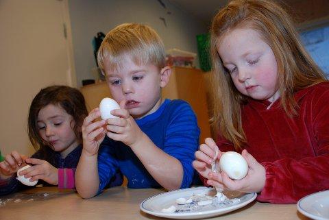 EGGESKRELLING. Elena Reppesgård (til venstre), Finn Martin D. Hovland og Mathea Sofie W. Tollefsen har fått den krevende, men viktige, oppgaven med å ta skallet av eggene.