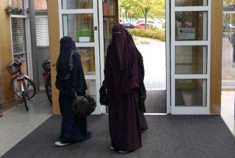Tre personer møtte frem i niqab under dagens debatt i fylkestinget.