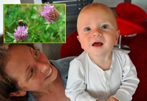 SVERGER TIL URTER: Christina Nesjenger (28) sier hun har gode erfaringer med å bruke urter til blant annet smertelindring. Her med sønnen William på elleve måneder som ble stukket av veps tre ganger. (Foto: Espen Moe)