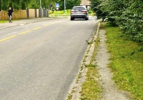 TVINGES UT I VEGEN: Vegetasjonen har gradvis fordrevi gående og syklende nærmere veibanen – helt til de begynte å bruke andre siden av veien i stedet.