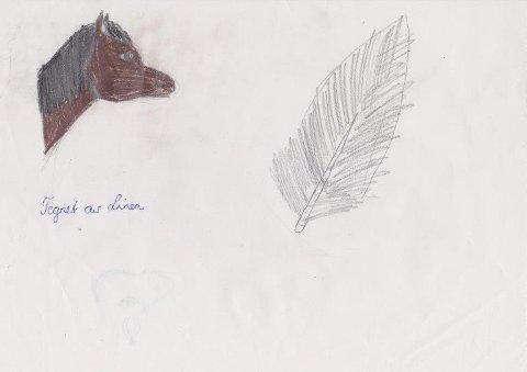 Tegnet av: Linea