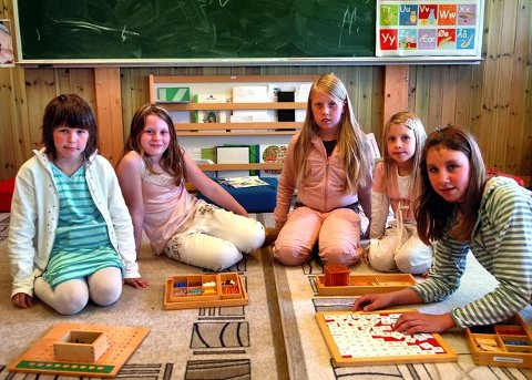TRIVES PÅ SKOLEN: Fem elever ved Solør Montessoriskole som stortrives med en ny måte å gå på skolen. Fra venstre Sara Liljebakk, Martine Rosenberg Hammeren, Karoline Øvergård, Martine Øvergård og Ine Madelene Øvergård. <I>Foto: Sverre Viggen</I>