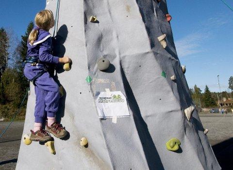 Høyt og lavt: Barna har forsøkt klatring, svømming, tennis, sykling og mye mer. Et annet råd fra kurslederne er å gå til skolen.