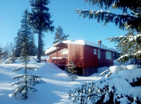 To soverom og fem sengeplasser i denne hytta på Blestølen. Prisantydningen er 900.000 kroner.