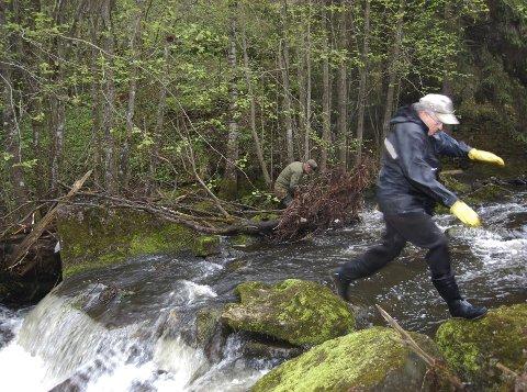 BUKKESPRANG: Trygve Solstad har tunga rett i munnen når han krysser Gjersjøelva på glatte steiner.