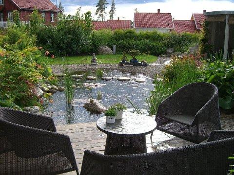 En hagedam bør være nær sitteplassen i hagen, anbefaler eksperten. FOTO: TROPEX