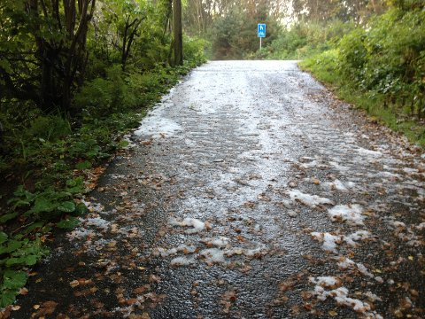 Dette bildet viser at det falt noen hvite krystaller også på Haugalandet torsdag 20. september. Dette bildet er tatt i Uradalen.