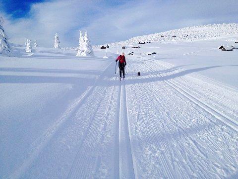 Vinterferien er i gang over store deler av landet. Men for skikkelige vinteraktiviteter må du nord for Mjøsa. Bildet er tatt på Hafjell.