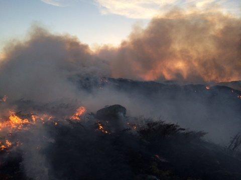 Brannvesenet Sør-Rogaland har søndag morgen kontroll over gress- og lyngbrannen som startet i Time kommune lørdag kveld.