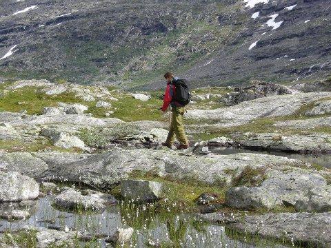 17. MAI TIL FJELLS: Valgte jeg feil i år? Burde jeg ikke gått på fjelltur alene, men feiret med min familie? Var min refleksjon rundt dagen og Grunnloven ikke godt nok?, spør innsenderen. Foto: NTB-Scanpix