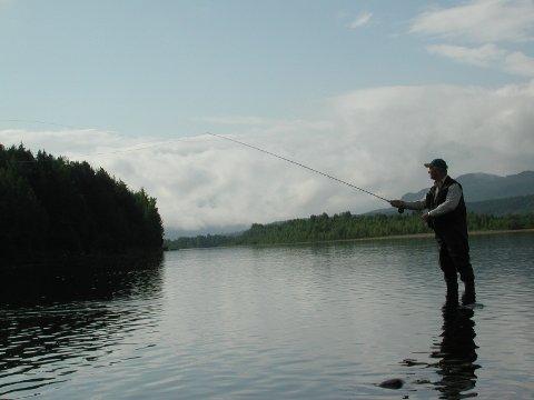 Ørretfiske i Glomma har ikke tatt seg opp til tross for 23 år med utsetting av fisk.