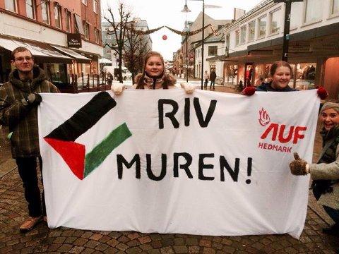 AKSJONERTE: AUF i Hedmark aksjonerte for Gaza og det palestinske folket lørdag. Fra venstre på bildet ser vi Kristian Flensborg, Hilde Kristine Pettersen, Vilde K. Dillerud og Erle Eide Nyhus.