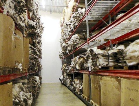 Fullt: Bedriften har 720 palleplasser for skinn.