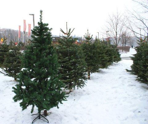Utmerket Østlendingen - Rekord for kunstige juletrær UV-09