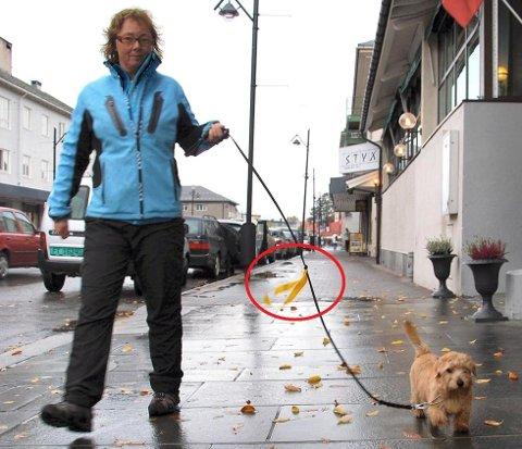 Tone Andresen bruker en gul sløyfe på båndet til hunden Vesla for å varsle at de ikke skal forstyrres. Andre bruker det gule båndet/sløyfen fordi hunden deres trenger litt ekstra plass eller tid til å flytte seg.