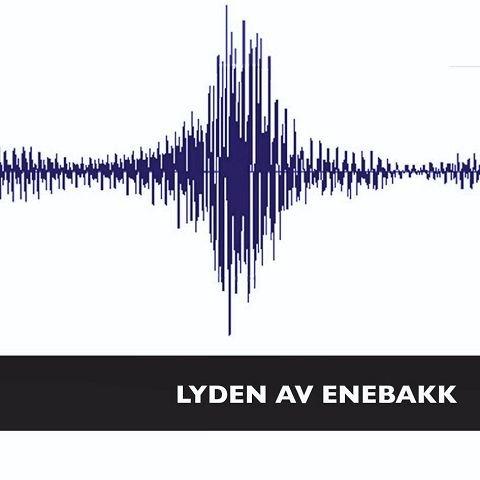 LYDEN AV ENEBAKK:Slik ser den ut, lyden av Enebakk med 12 nye låter av artister og musikere i Enebakk.
