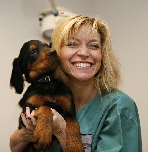 POPULÆRE: Gordonsetteren er en populær hunderase i vårt distrikt, og Trude Mostue en populær veterinær. Her er hun med 10 uker gamle Amigo. FOTO: TORE GURIBY