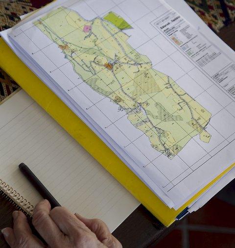 PLANOMRÅDE BÅLERUD: I dag er det rundt hundre helårsboliger og 25 hytter i området som skal reguleres.
