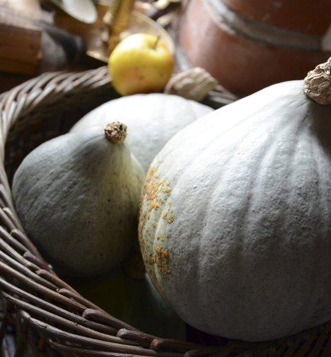 Markens grøde: Noe av høstens avlinger tjener som vakre stilleben.