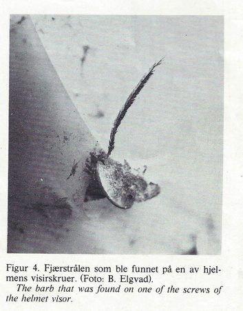 En fjær fra tranen ble funnet på en av hjelmens visirskruer.