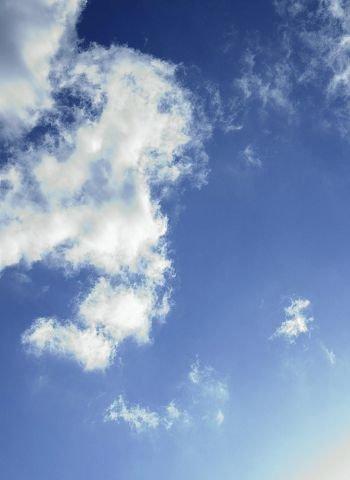 Seilfly er prisgitt elementene, og kan være i lufta opp mot 5 timer av gangen under gunstige forhold.
