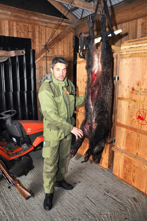 STORT DYR: – Villsvinet var nok ikke mer enn 20 meter unna meg da jeg satte et velrettet skudd i det, sa Bjørn Kråkevik etter jaktopplevelsen søndag ettermiddag. Foto: Svein Sjølie