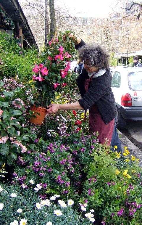 Nina Ponti passer på at blomstene på Paris' klassiske blomstermarked tar seg best mulig ut.