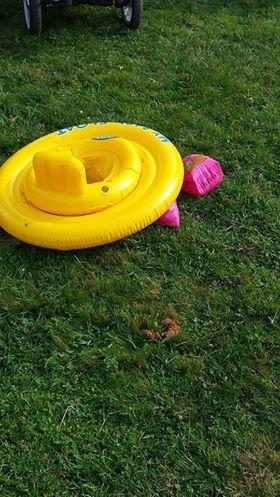 En av hundene gjorde fra seg rett ved barnas badeleker.